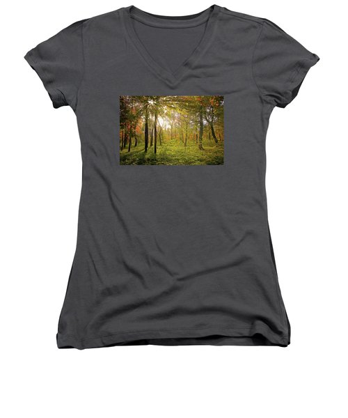 Women's V-Neck featuring the painting The Woods by Harry Warrick