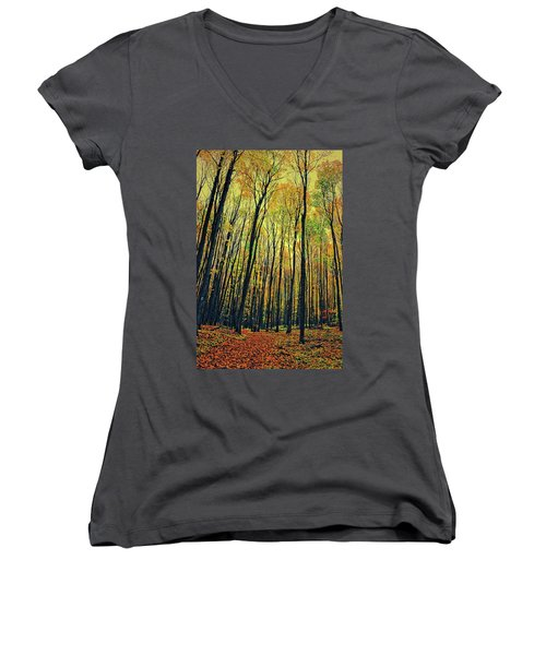 Women's V-Neck T-Shirt (Junior Cut) featuring the photograph The Woods In The North by Michelle Calkins