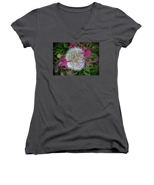 The Yin And The Yang Women's V-Neck T-Shirt