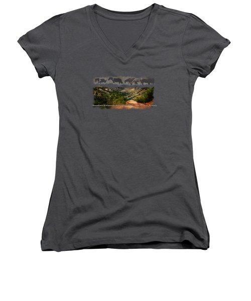 Theodore Roosevelt National Park Women's V-Neck T-Shirt (Junior Cut) by Ann Lauwers