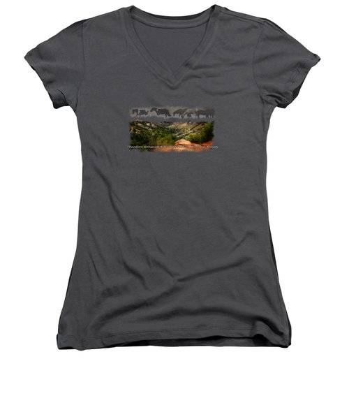 Theodore Roosevelt National Park Women's V-Neck (Athletic Fit)
