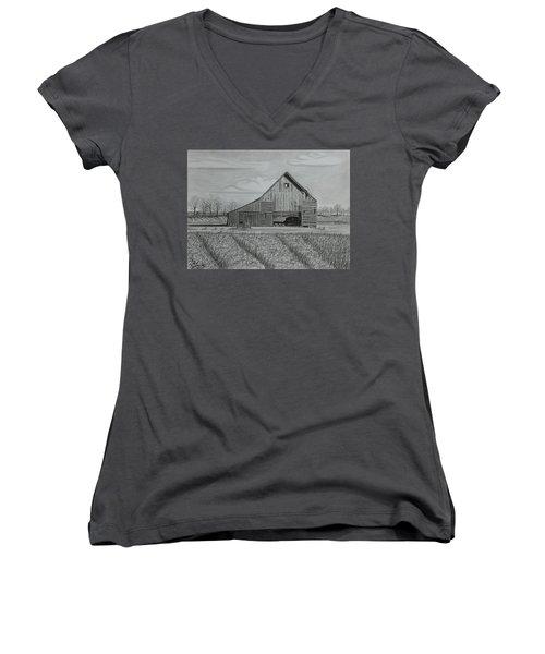 Theresa's Barn Women's V-Neck T-Shirt (Junior Cut) by Tony Clark