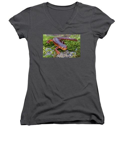 They Do Exist Women's V-Neck T-Shirt (Junior Cut) by Scott Warner