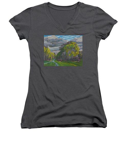 Thirty Shades Of Green Women's V-Neck T-Shirt