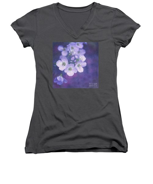 This Enchanted Evening Women's V-Neck T-Shirt (Junior Cut) by Lyn Randle