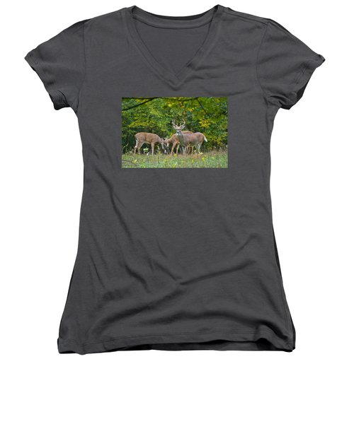 Three Bucks_0054_4463 Women's V-Neck T-Shirt