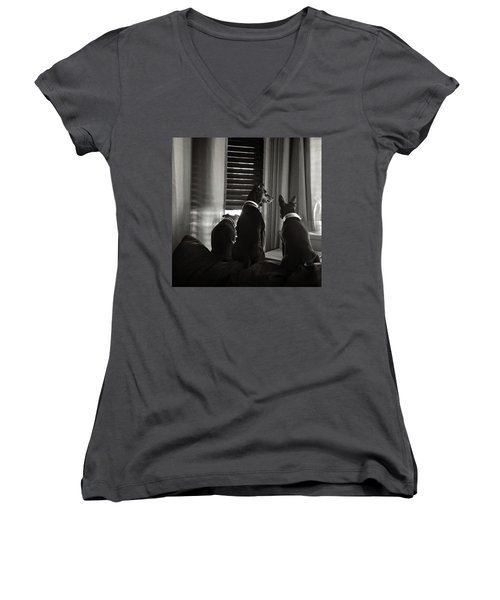 Three Min Pin Dogs Women's V-Neck