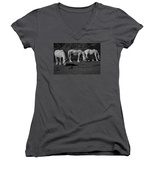 Three Shires Women's V-Neck (Athletic Fit)