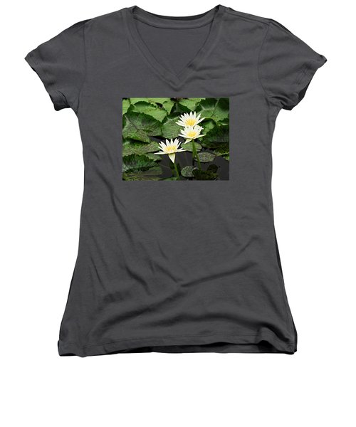Three Water Lilies Women's V-Neck T-Shirt