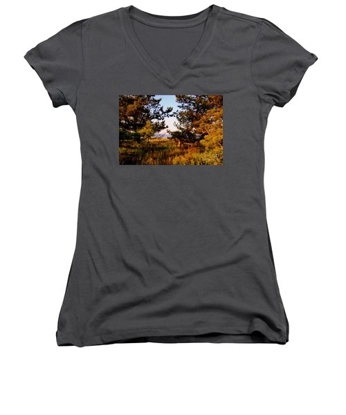 Through The Pine Grove Women's V-Neck (Athletic Fit)