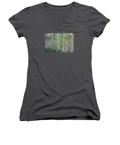 Women's V-Neck T-Shirt (Junior Cut) featuring the photograph Through The Willows by Linda Geiger