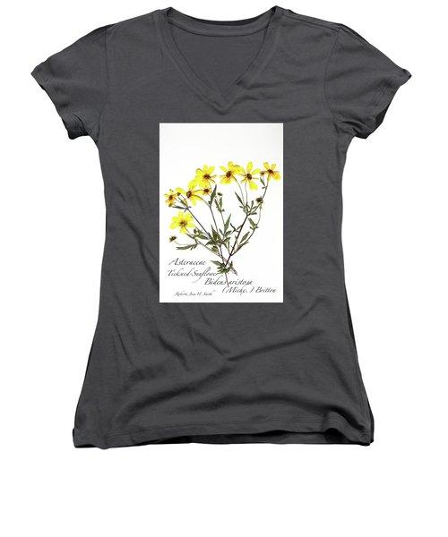 Tickseed Sunflower Women's V-Neck (Athletic Fit)