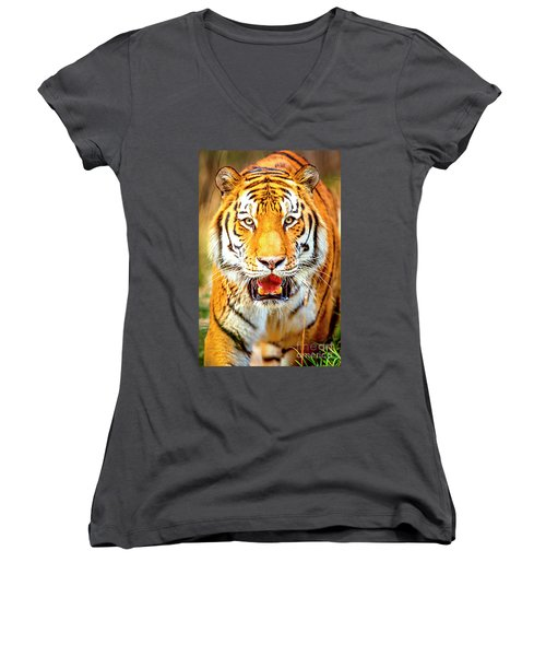 Tiger On The Hunt Women's V-Neck T-Shirt (Junior Cut) by David Millenheft
