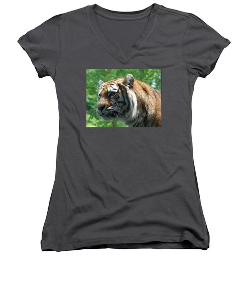 Women's V-Neck T-Shirt (Junior Cut) featuring the photograph Tiger Profile by Richard Bryce and Family