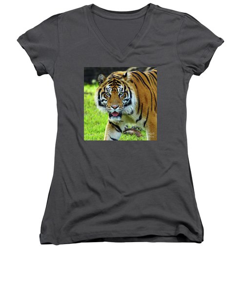 Tiger The Stare Women's V-Neck T-Shirt (Junior Cut) by Larry Nieland