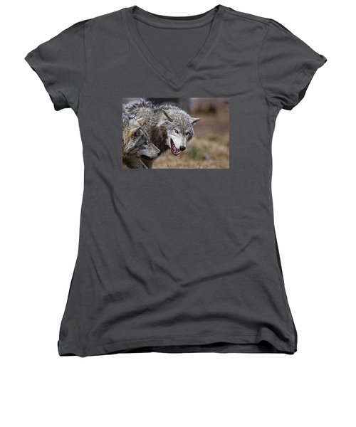 Women's V-Neck T-Shirt (Junior Cut) featuring the photograph Timber Wolves by Michael Cummings
