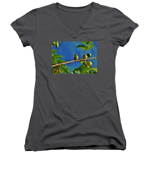 Tiny White Eye And Guava Women's V-Neck (Athletic Fit)