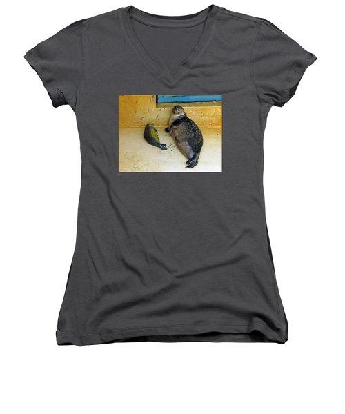 Tired Of Tourists. No Flash Photography Please.  Women's V-Neck T-Shirt (Junior Cut) by Ausra Huntington nee Paulauskaite