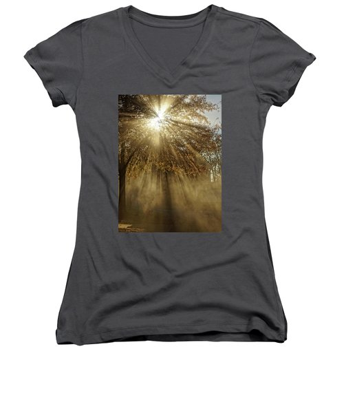 To Catch A Ray Of Sunlight Women's V-Neck (Athletic Fit)