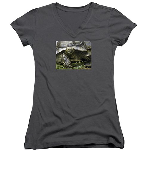 Women's V-Neck T-Shirt (Junior Cut) featuring the photograph Tortoise's Stare by Betty Denise