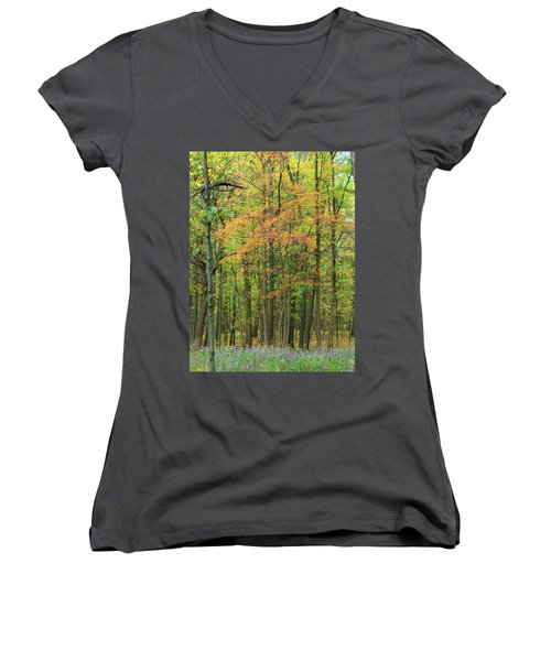 Touch Of Autumn Women's V-Neck T-Shirt (Junior Cut) by Cedric Hampton