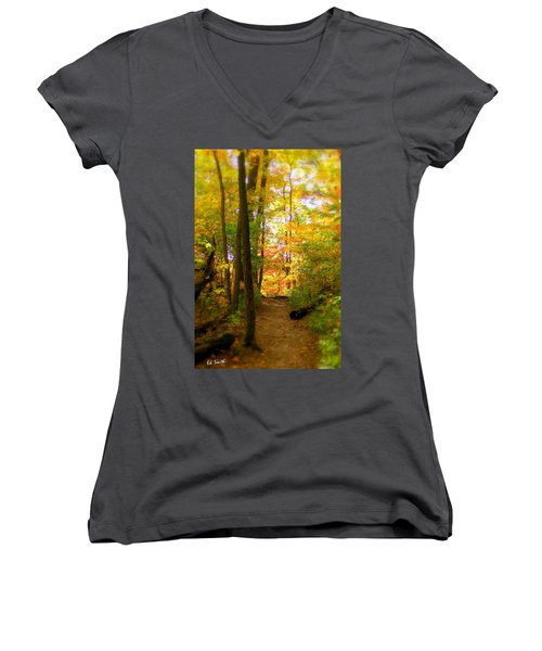 Trailhead Light Women's V-Neck T-Shirt