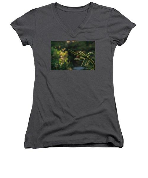 Transformer Women's V-Neck T-Shirt
