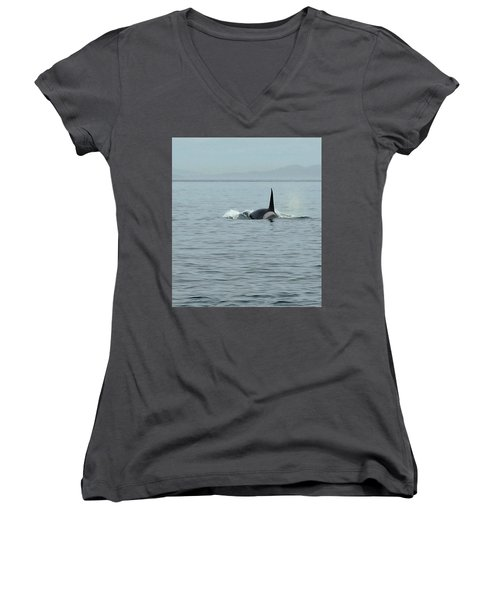 Transient Killer Whale Women's V-Neck T-Shirt (Junior Cut) by Brian Chase
