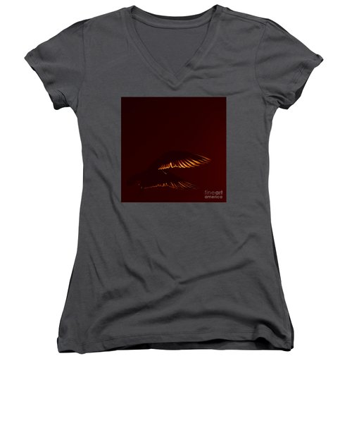 Transiently Translucent Women's V-Neck