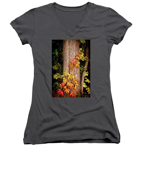 Tree Adornment Women's V-Neck T-Shirt