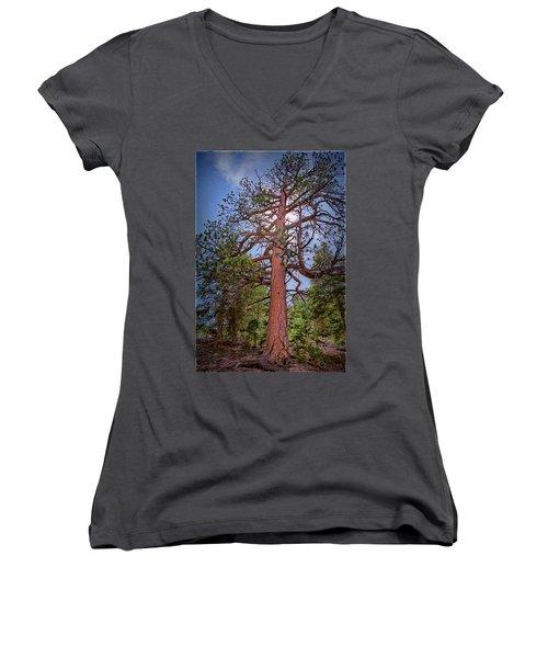 Tree Cali Women's V-Neck