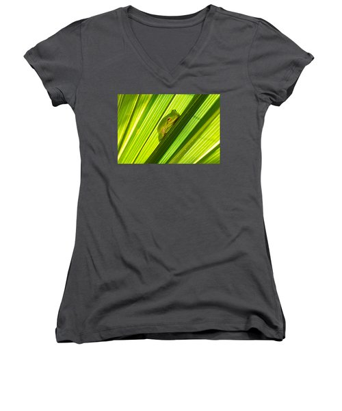 Tree Frog And Palm Frond Women's V-Neck T-Shirt (Junior Cut) by Kenneth Albin