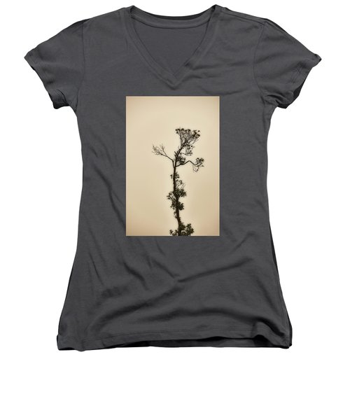 Tree In The Mist Women's V-Neck T-Shirt (Junior Cut) by Rajiv Chopra