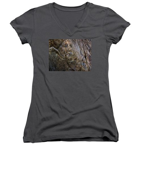 Women's V-Neck T-Shirt (Junior Cut) featuring the photograph Tree Memories # 19 by Ed Hall