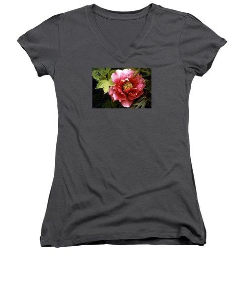 Tree Peony Women's V-Neck T-Shirt (Junior Cut) by Janis Nussbaum Senungetuk