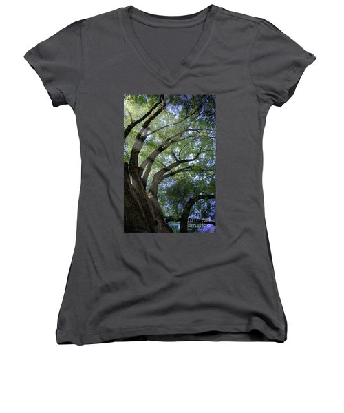 Tree Rays Women's V-Neck (Athletic Fit)