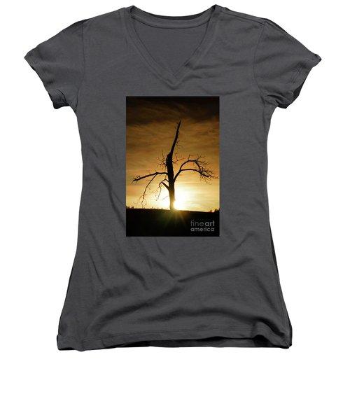 Tree Silhouette At Sundown Women's V-Neck