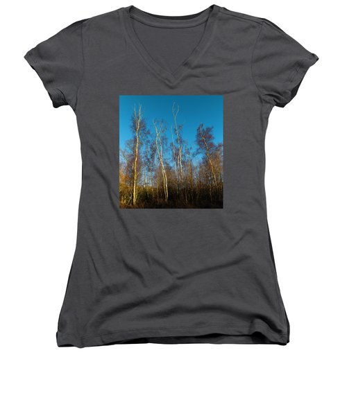 Trees And Blue Sky Women's V-Neck (Athletic Fit)