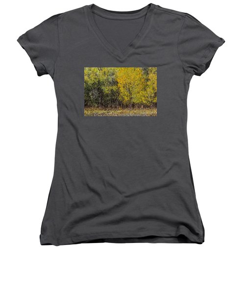 Trees In Fall With Texture Women's V-Neck T-Shirt (Junior Cut) by John Brink