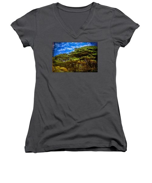 Trees On An Oregon Beach Women's V-Neck T-Shirt (Junior Cut) by John Brink