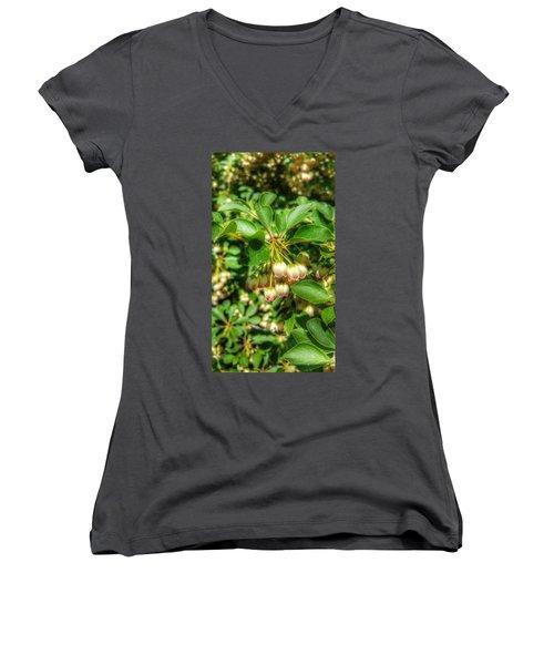 Tres Belle Women's V-Neck T-Shirt (Junior Cut) by Isabella F Abbie Shores FRSA