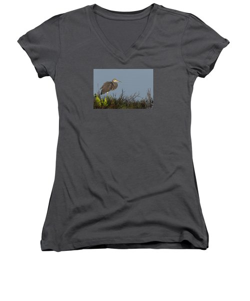 Tri-colored Heron In The Morning Light Women's V-Neck (Athletic Fit)