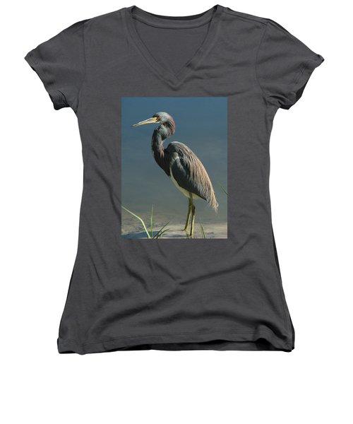 Tricolored Heron Women's V-Neck