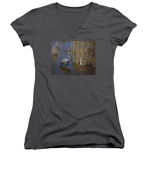 Tricolored Heron Wading Women's V-Neck T-Shirt
