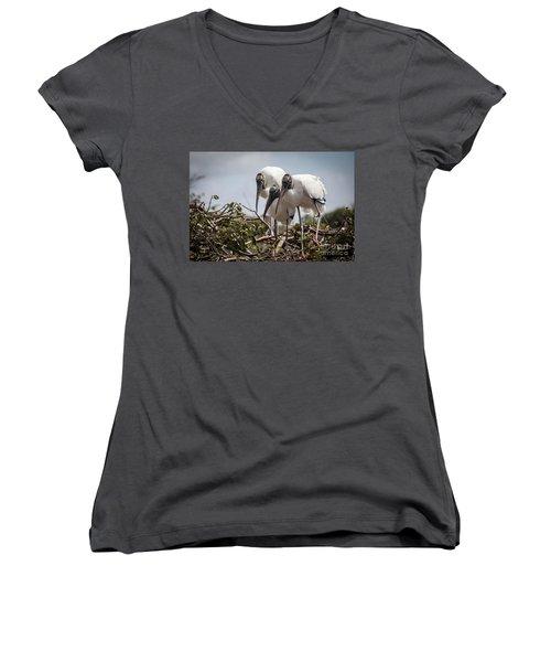 Trio Of Storks Women's V-Neck T-Shirt (Junior Cut) by Jim Gillen