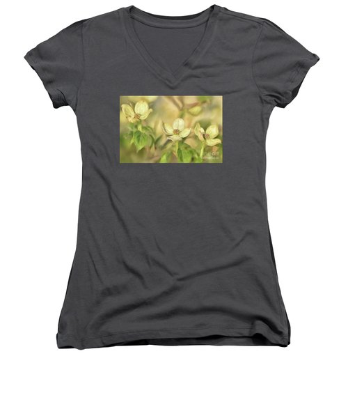 Triple Dogwood Blossoms In Evening Light Women's V-Neck T-Shirt (Junior Cut) by Lois Bryan