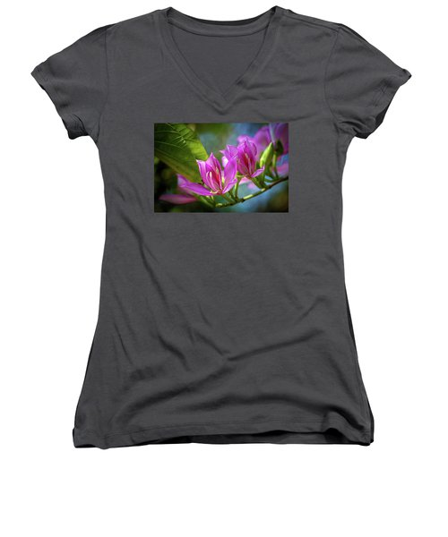Tropical Line Dance Women's V-Neck
