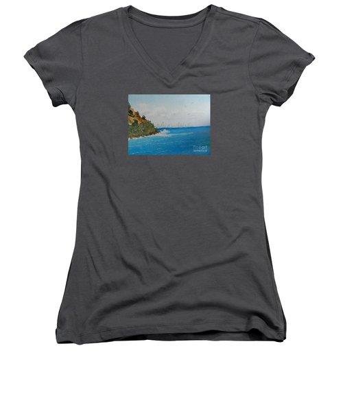 Tropical Paradise Women's V-Neck (Athletic Fit)