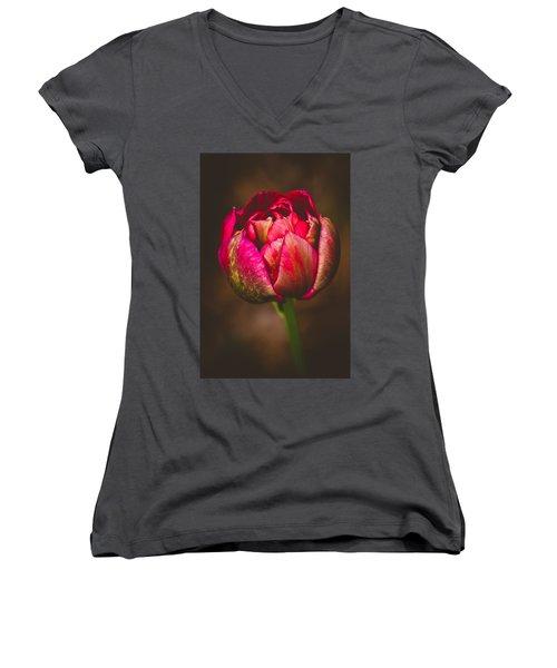 True Colors Women's V-Neck T-Shirt (Junior Cut) by Yvette Van Teeffelen