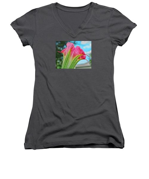 Trumpet Women's V-Neck T-Shirt
